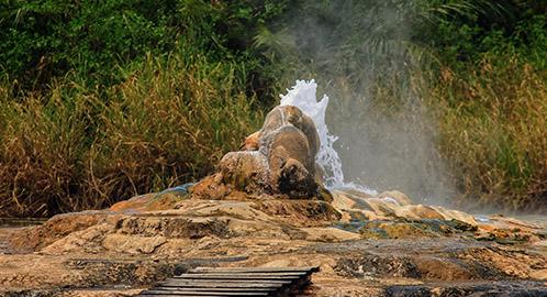 Hot Springs at Semuliki Park